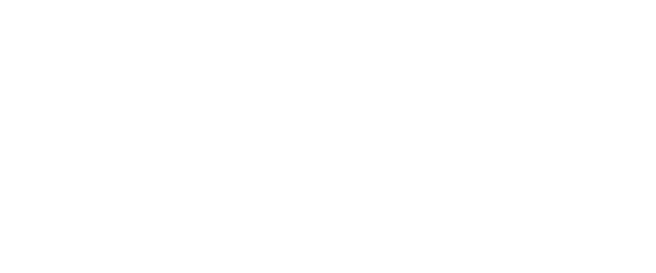 Professional Home Inspections New Orleans